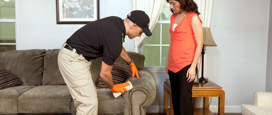 High Point, NC carpet upholstery cleaning